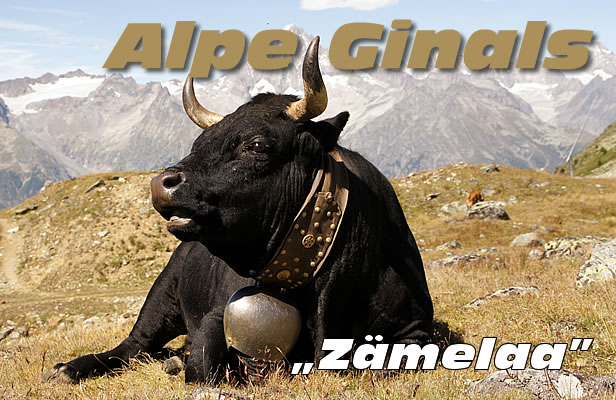 alpe_ginals
